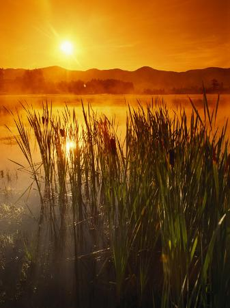 richard-nowitz-sunrise-over-a-misty-pond-and-the-presidential-mountains