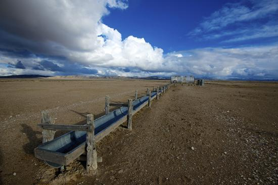 richard-wright-barrel-spring-ely-nevada-a-remote-spring-in-the-nevada-desert