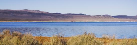 rita-crane-desert-lake-ii