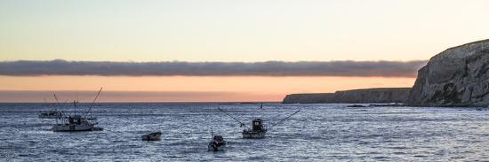 rita-crane-fishing-boats-iv