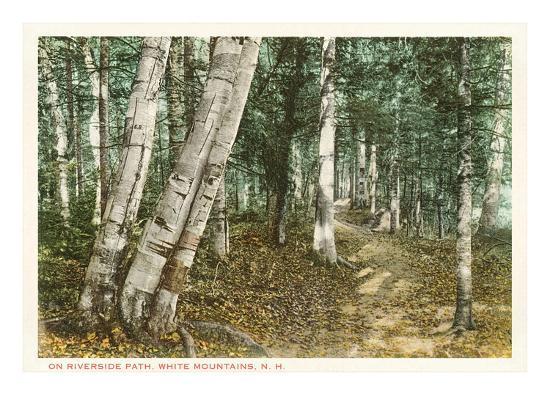 riverside-path-white-mountains-new-hampshire