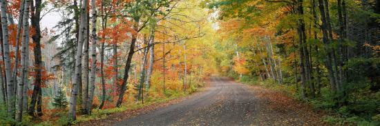 road-passing-through-a-forest-keweenaw-county-keweenaw-peninsula-michigan-usa