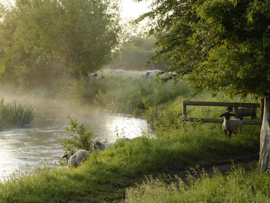 rob-cousins-river-windrush-near-burford-oxfordshire-the-cotswolds-england-united-kingdom-europe