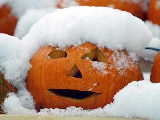 robert-f-bukaty-october-snow