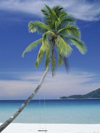 robert-francis-palm-tree-and-beach-long-beach-perhentian-kecil-terenggenu-terengganu-malaysia