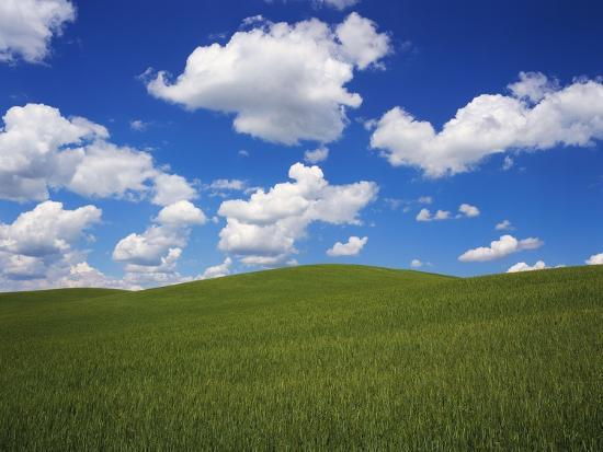 robert-glusic-field-of-green-under-scattered-clouds