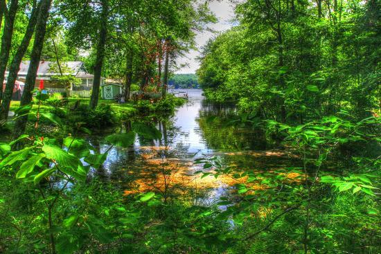 robert-goldwitz-pond-cove