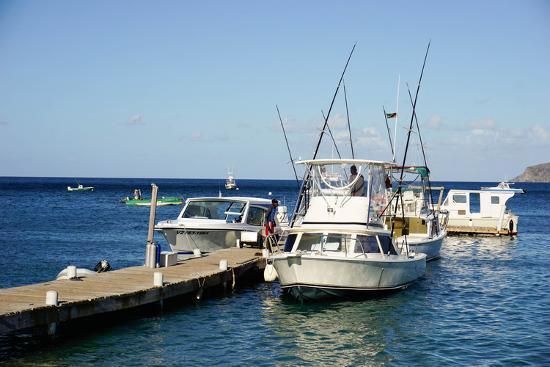 robert-harding-dock-at-oualie-beach-nevis-st-kitts-and-nevis