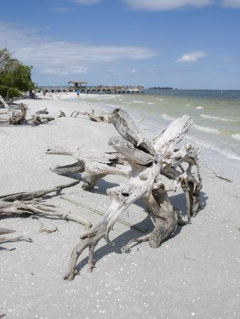 sanibel chat Plan your next trip with expedia read reviews on thousands of hotels buy airline tickets easily, and bundle for even more savings expedia price guarantee.
