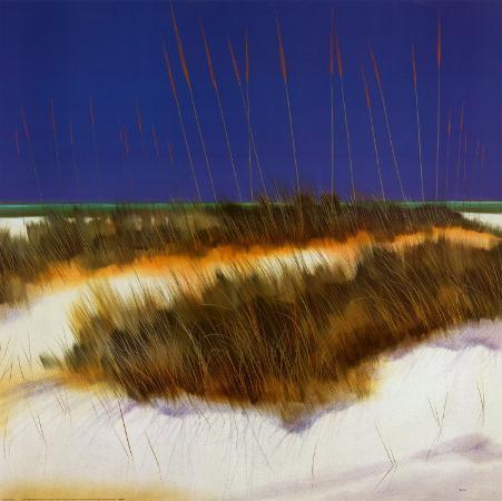 robert-holman-dunes
