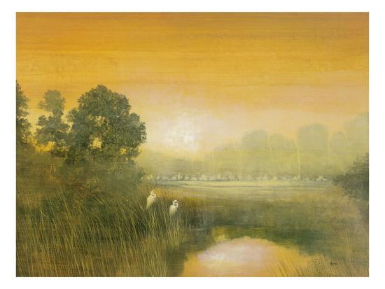 robert-holman-wetlands