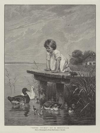 robert-julius-beyschlag-young-ducks