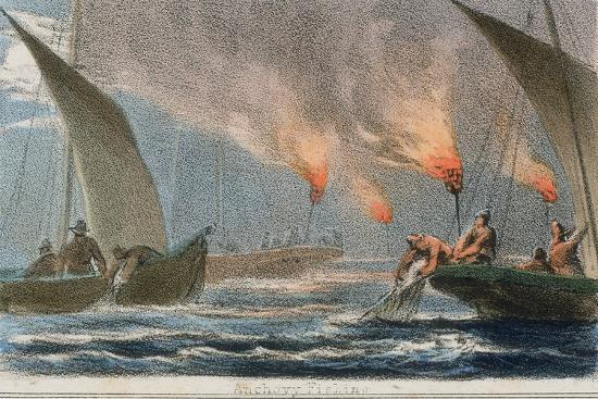 robert-kent-thomas-anchovy-fishing-c1845