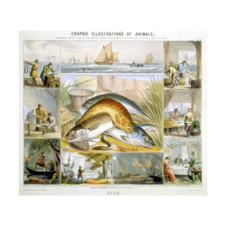 robert-kent-thomas-fish-c1850