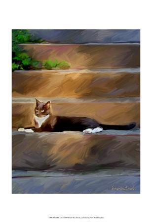 robert-mcclintock-trouble-cat