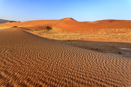 roberto-moiola-dried-plants-among-the-sand-dunes-shaped-by-wind-sossusvlei-namib-naukluft-national-park