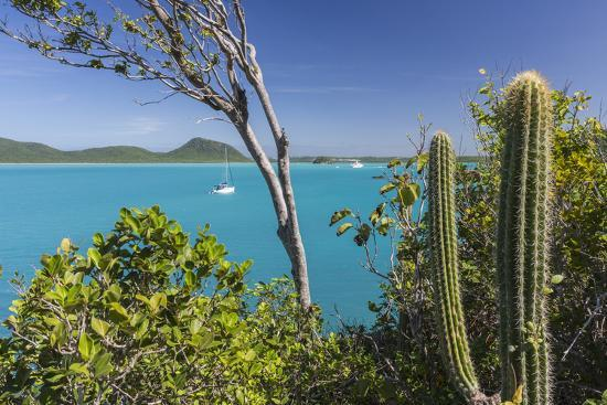 roberto-moiola-panoramic-view-of-spearn-bay-from-a-hill-overlooking-the-quiet-lagoon-visited-by-many-sailboats