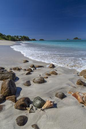 roberto-moiola-shells-and-rocks-lie-on-the-beach-of-spearn-bay-lit-the-tropical-sun-and-washed-by-caribbean-sea