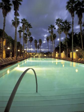 robin-hill-delano-hotel-south-beach-miami-florida-usa