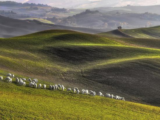 roman-lipinski-pastoral