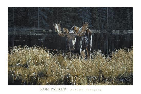 ron-parker-autumn-foraging