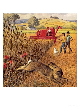 ronald-lampitt-harvest-time