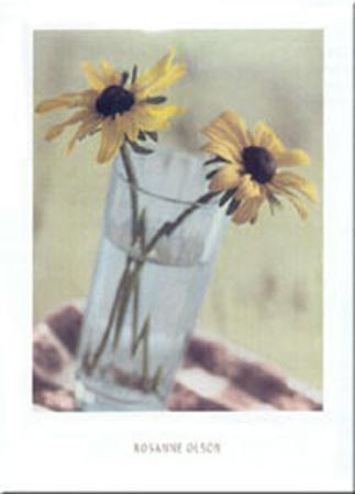 rosanne-olsen-two-black-eyed-marigolds