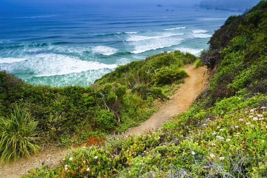 russ-bishop-the-trail-to-sand-dollar-beach-los-padres-national-forest-big-sur-california-usa