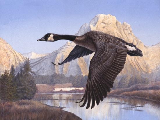 rusty-frentner-goose-mtn
