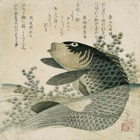 ryuryukyo-shinsai-carp-among-pond-plants-c-1800