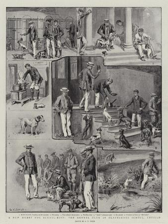 s-t-dadd-a-new-hobby-for-school-boys-the-kennel-club-at-clayesmore-school-enfield