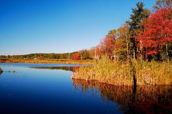 sabine-jacobs-calm-lake-in-new-england-connecticut-usa
