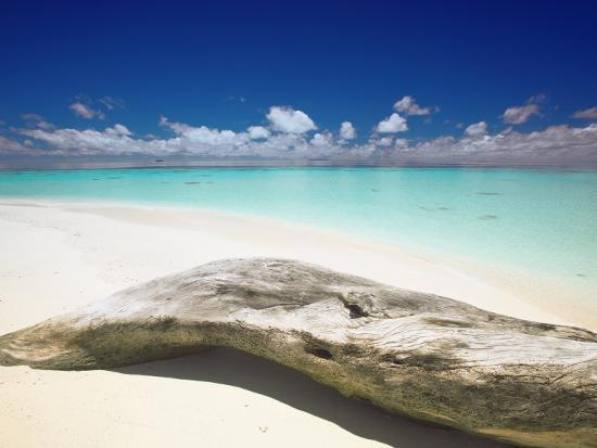 sakis-papadopoulos-driftwood-on-the-beach-maldives-indian-ocean-asia