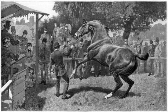 sale-of-hunters-raising-and-objection-1885