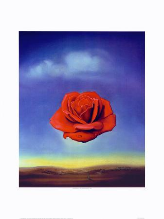 salvador-dali-rose-medidative-c-1958