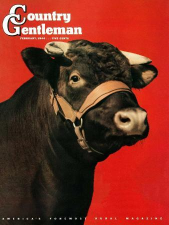 salvadore-pinto-black-bull-country-gentleman-cover-february-1-1944
