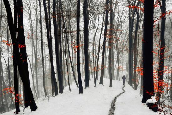 samanta-through-autumn-and-winter