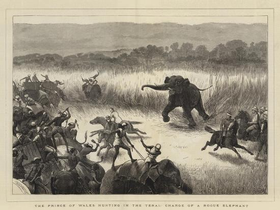 samuel-edmund-waller-the-prince-of-wales-hunting-in-the-terai-charge-of-a-rogue-elephant