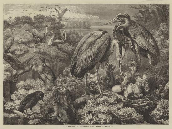 samuel-john-carter-the-heronry-at-didlington-park-norfolk