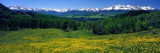 san-miguel-mountains-in-spring-colorado-usa