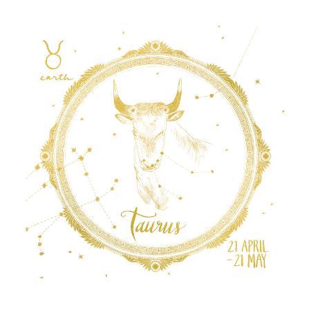 sara-zieve-miller-night-sky-taurus-white-and-gold