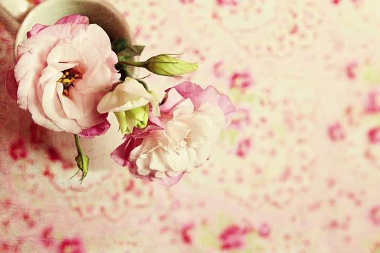 sarah-gardner-a-cup-of-romance