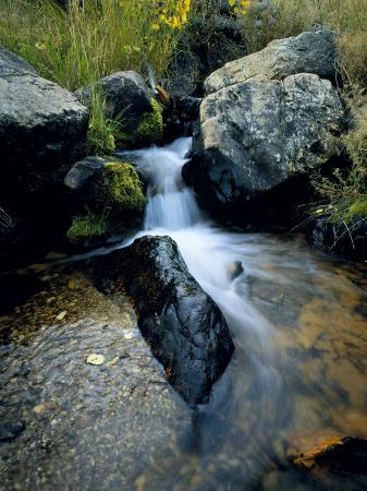 scott-t-smith-north-creek-tumbles-through-boulders-schell-creek-range-mt-grafton-wilderness-nevada-usa