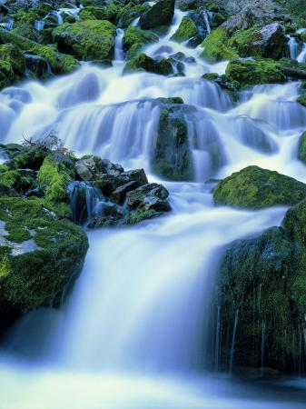 scott-t-smith-periodic-spring-during-period-of-high-flow-salt-river-range-bridger-teton-national-forest-wy