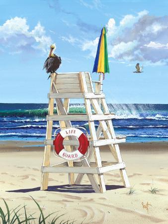scott-westmoreland-pelican-perch