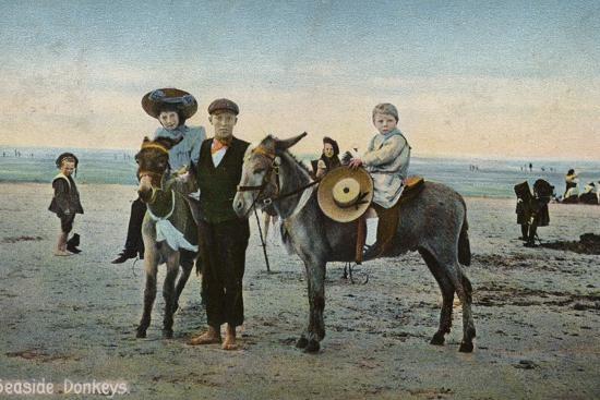 seaside-donkeys
