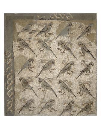 semis-de-perroquets-enrubannes-fragment-de-mosaique-de-pavement
