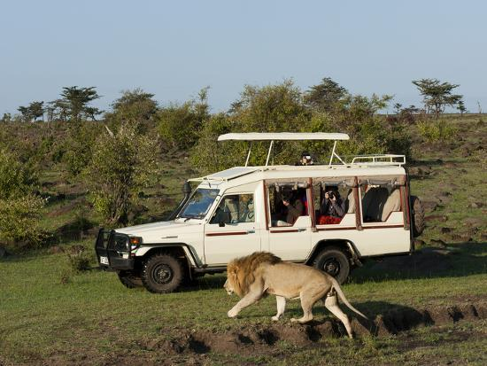 sergio-pitamitz-lion-panthera-leo-and-safari-vehicle-masai-mara-kenya-east-africa-africa