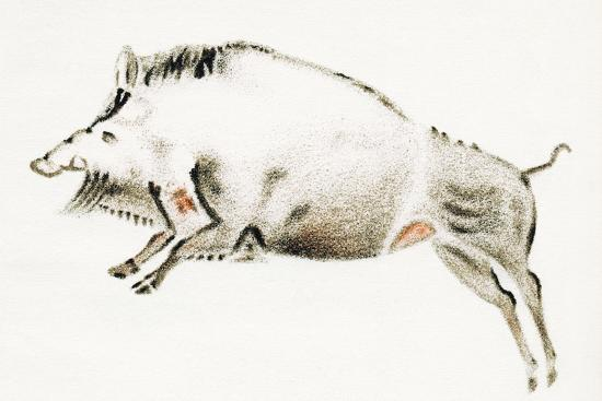 sheila-terry-cave-painting-of-a-boar-artwork