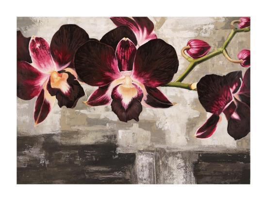 shin-mills-velvet-orchids